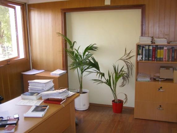 Oficina en edificio hermes sotolandproperty avda for Oficinas bankia sevilla